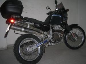 Dommie 004