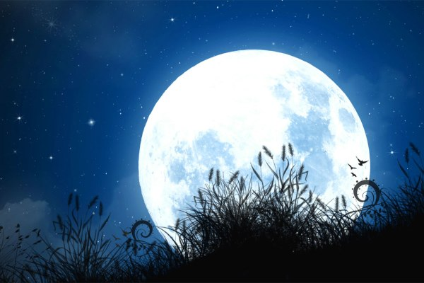 Alla-luna
